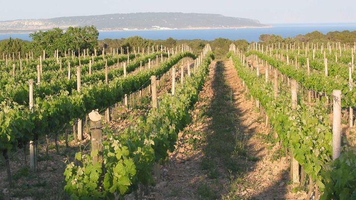 Imagen  A què sap Formentera?