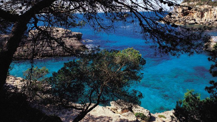 Imagen  Indulge in the charm of the Serra de Tramuntana bays