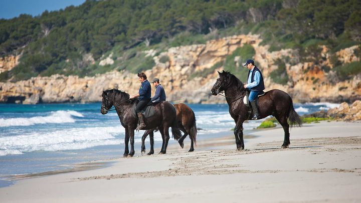 Imagen  Excursiones a caballo en Menorca