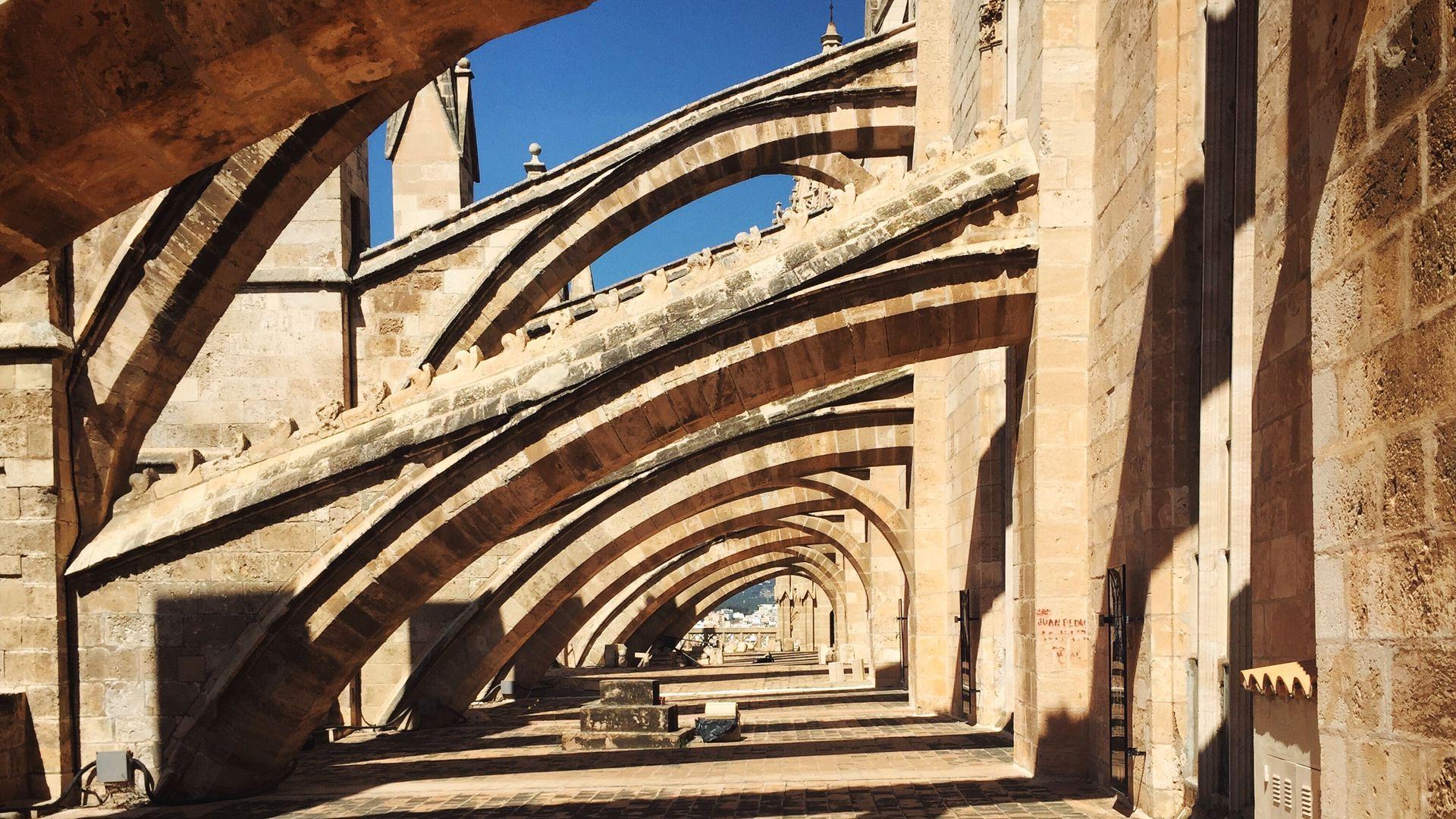 Imagen  Palma des del cel, Les terrasses de la Catedral