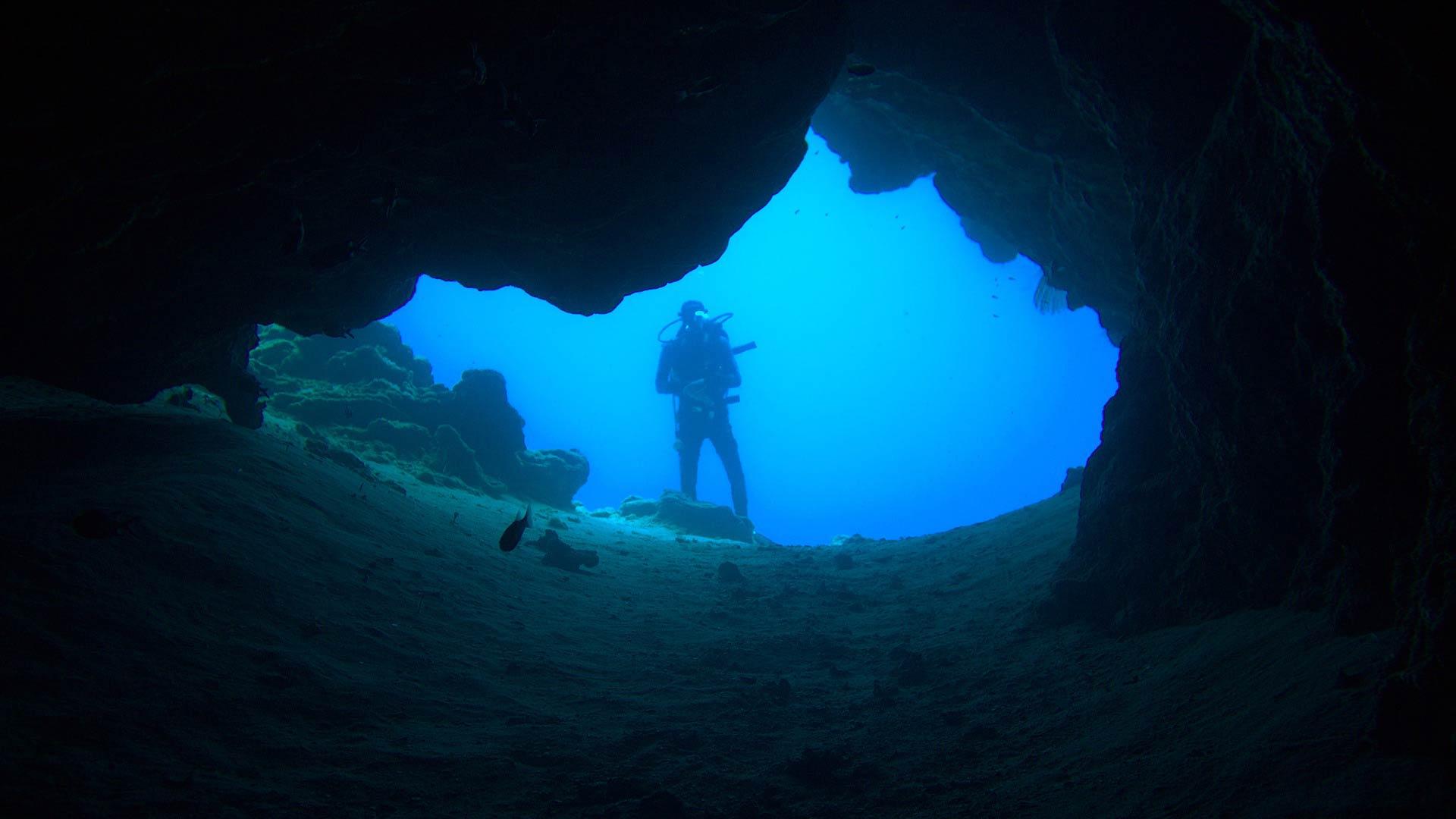 Imagen  Ibiza, la isla submarina