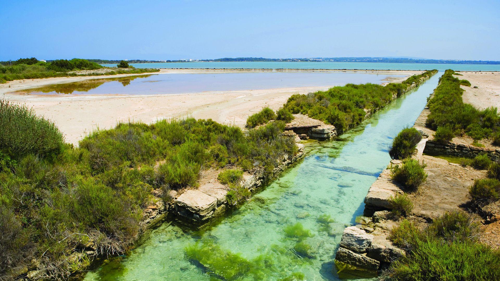 Imagen Àrea natural protegida Estany Pudent