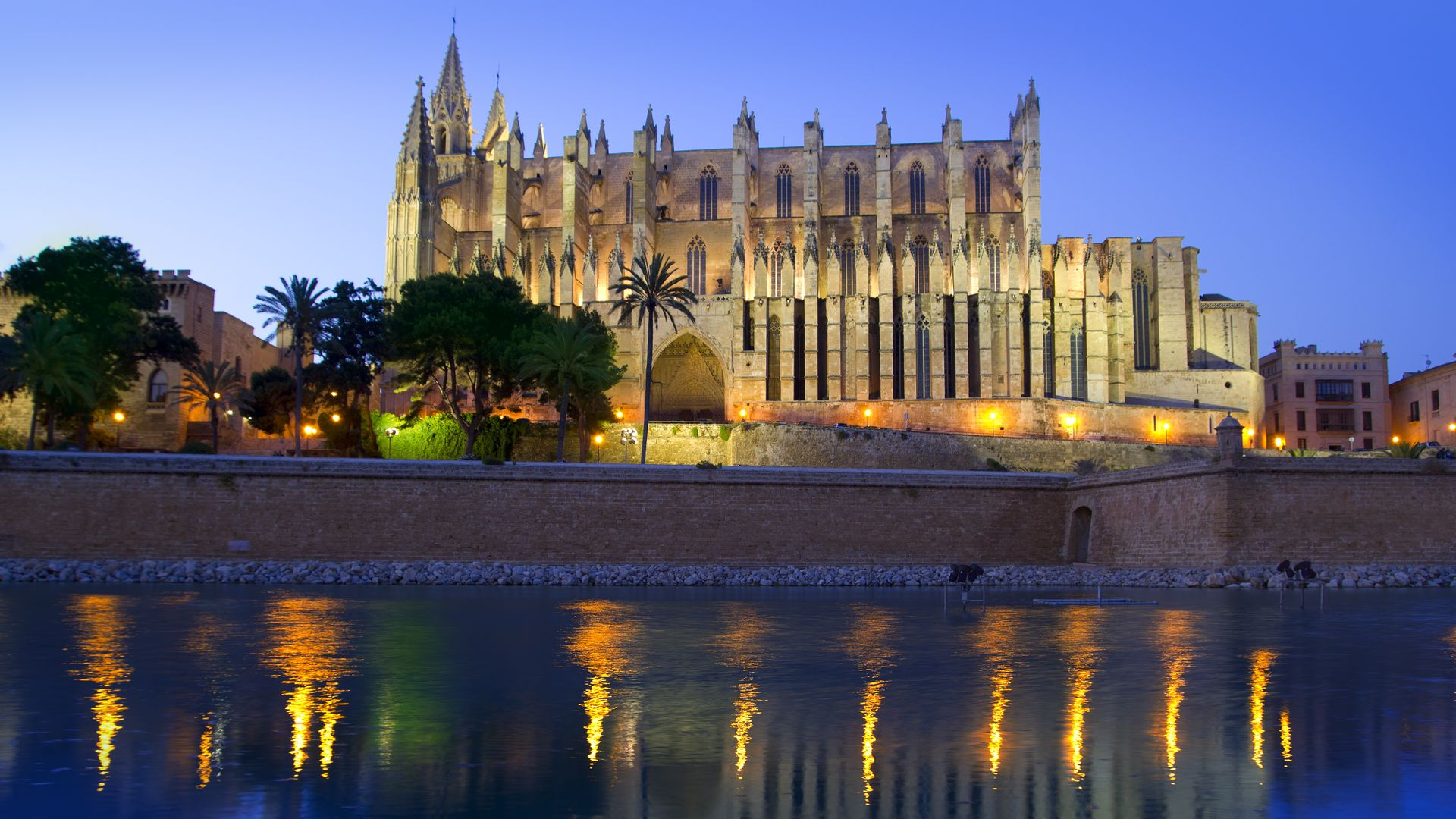 Vista a la Catedral La Seu de Mallorca