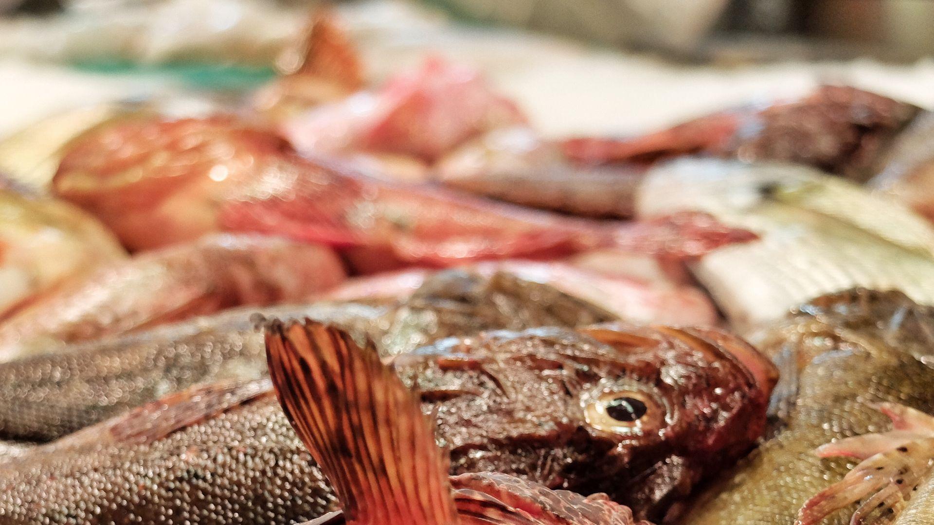 Imagen Gastronomische Markt Mercat de l'Olivar