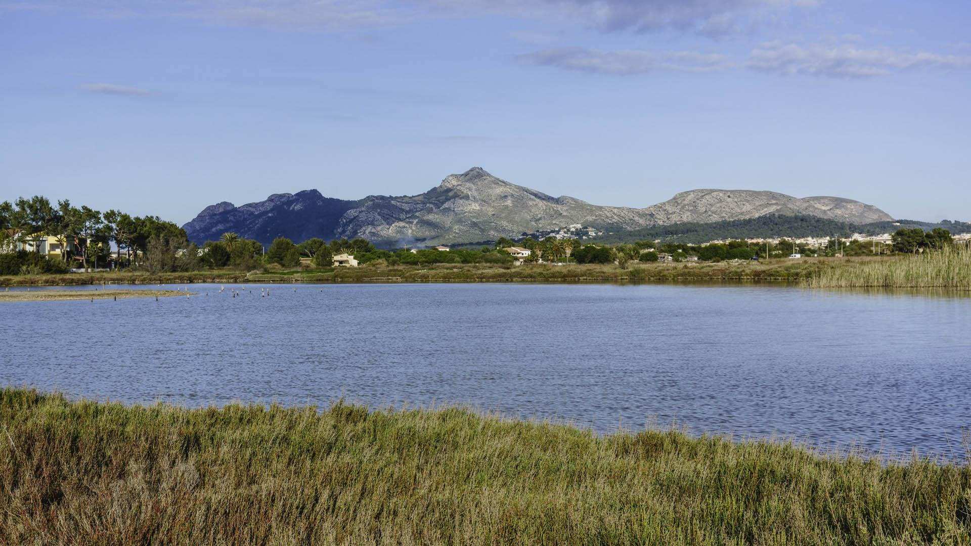 Imagen Reserva natural Albufereta